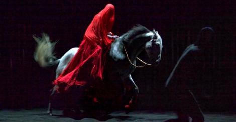 blog_horse2
