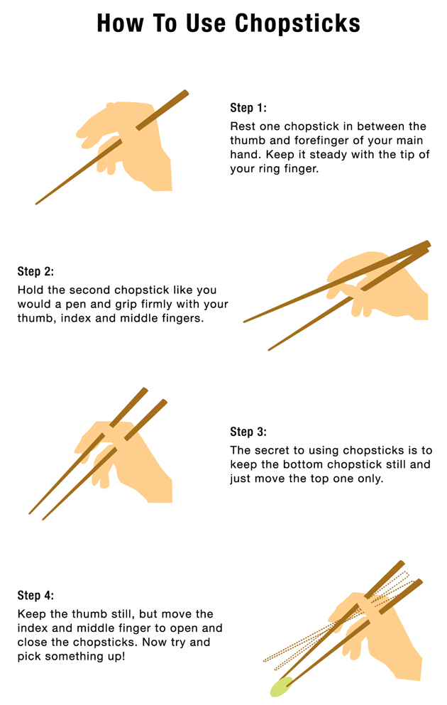 Learn How to Use Chopsticks… and How to Catch Flies! – Japancentre ...