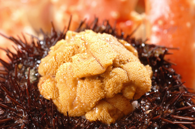 Uni Foods To Eat