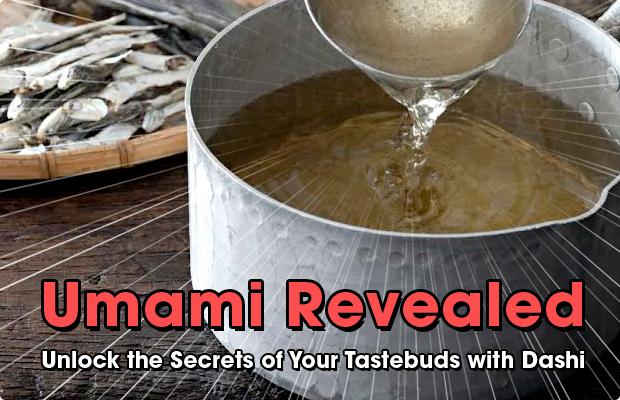 Umami Revealed