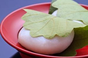 Yummy Kashiwa Mochi