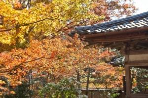 Saimyo-ji