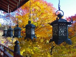 Autumn at Tanzan