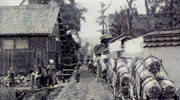 Carrying Rice for Alcohol in the Meiji Period
