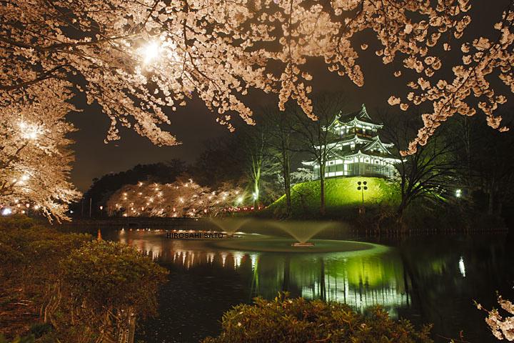 Blog - hiroshi sato flickr -