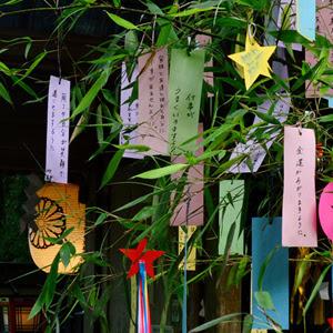 Tanzaku at Tanabata Festival